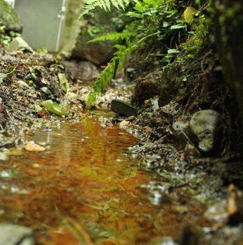 """Water source """"Ferruginosa"""""""